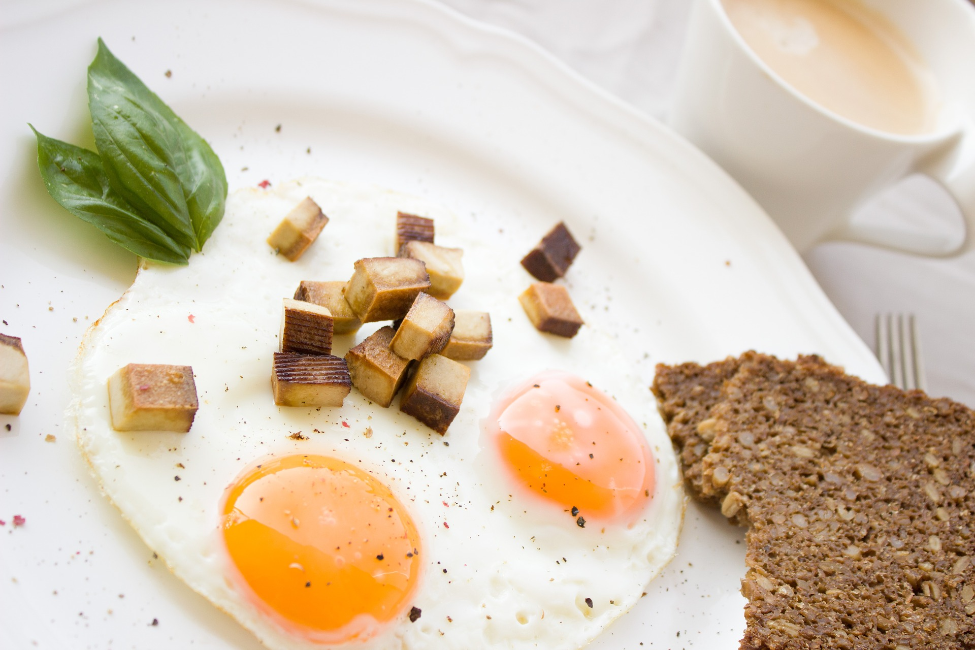 fontes de proteina animal e vegetal como ovo e cogumelos