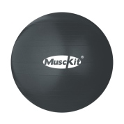 v320345_musckit_fitness-ball-wpump_1