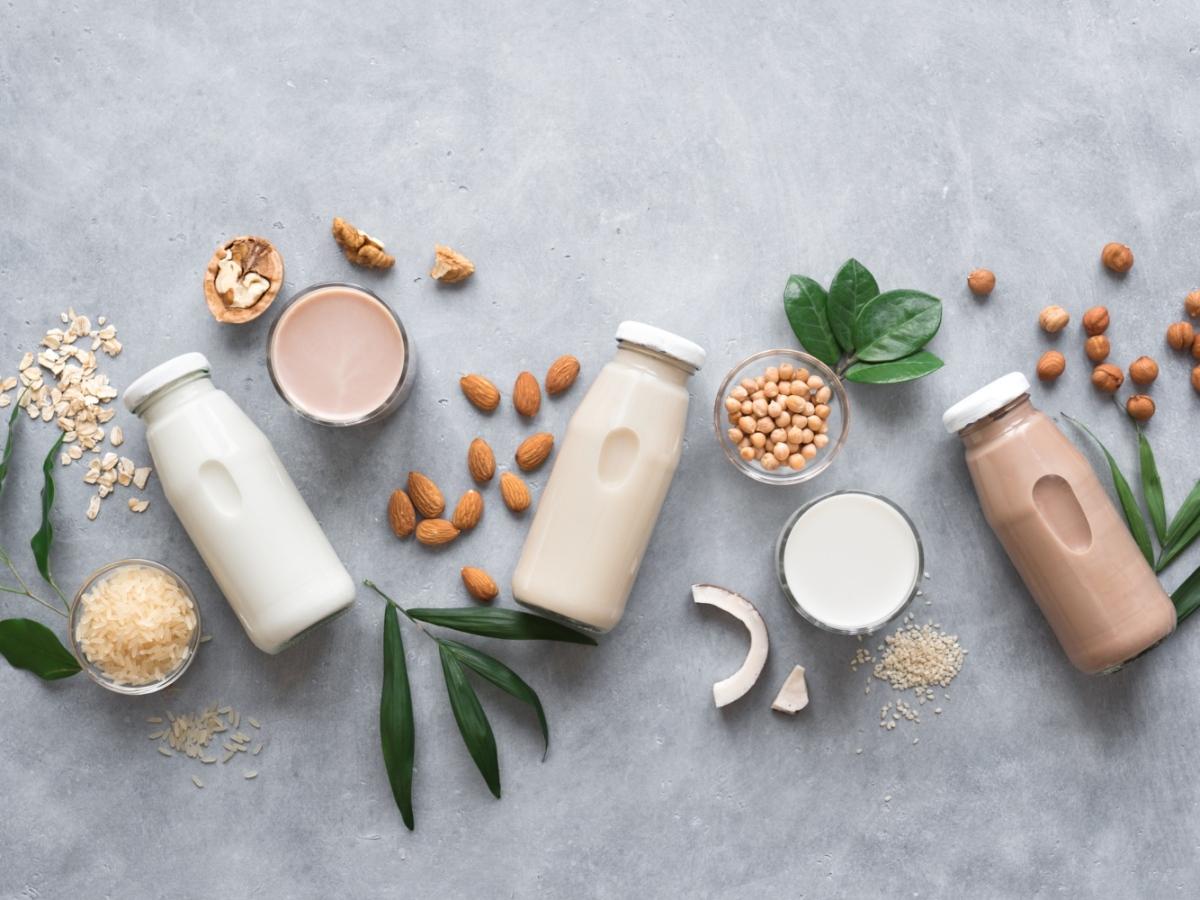 bebidas vegetais leite